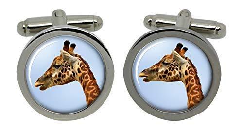 Mancuernas de la jirafa en una caja de regalo