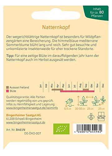 Bingenheimer Saatgut Natternkopf Echinum plantagineum demeter bio für ca. 80 Pflanzen