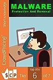 Malware Protection And Removal (English Edition)