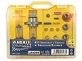 CARALL Kit bombillas de repuesto,Kits de bombillas universales,Coche Bombilla Set Con Fusibles (H4 12V60/55W X2)