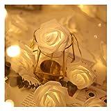 LLLWWW Adecuado para Interiores Y Exteriores Impermeables Rose Cadena Luces LED, Impulsado 2m 20 LED Rose Fairy Tale Luces De La Secuencia De Batería, Luces De Bricolaje, Decoración De
