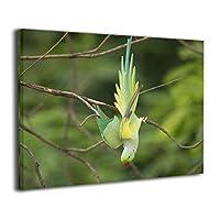Skydoor J パネル ポスターフレーム 鳥 緑 インテリア アートフレーム 額 モダン 壁掛けポスタ アート 壁アート 壁掛け絵画 装飾画 かべ飾り 30×40