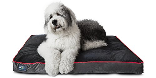 Orthopedic Dog Bed | Pure Premium Shredded Memory Foam Ideal for Aging...
