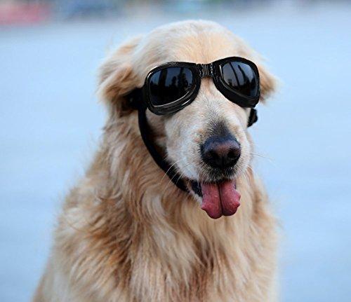 Namsan Hunde Sonnenbrille Platz-förmiger Hundebrille Wasserdicht Winddicht Schutzbrille für Mittlere/Groß Hunde -Schwarz