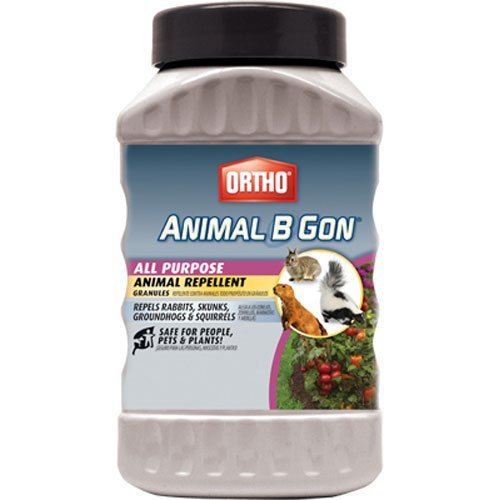 Ortho 489910 Animal B Gon All Purpose Animal Repellent Granules, 2-Pound (Squirrel, Groundhog,...