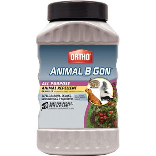 Ortho 489910 Animal B Gon All Purpose Animal Repellent Granules, 2-Pound (Squirrel, Groundhog,...