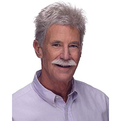 ZCM Parrucca da uomo, moda argento bianco mezza età bello capelli corti naturale realistica parrucca di alta qualità