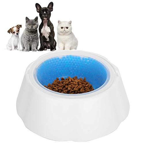 Asixxsix Ciotola refrigerante per Cani, Alimentatore per Animali Domestici Non tossico Durevole, Ciotola per Bere, Ciotola per refrigerazione per Animali Domestici, per Cane con Supporto adattivo