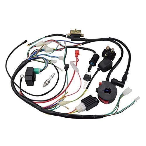 Bayda ATV 150 Cc 200 Cc 250 cc Bobina de encendido conjunto de interruptor de cableado de rectificación, CDI ATV SolenoDe bujía de encendido Quad Pit Dirt Bike Buggy Go Kart Kits