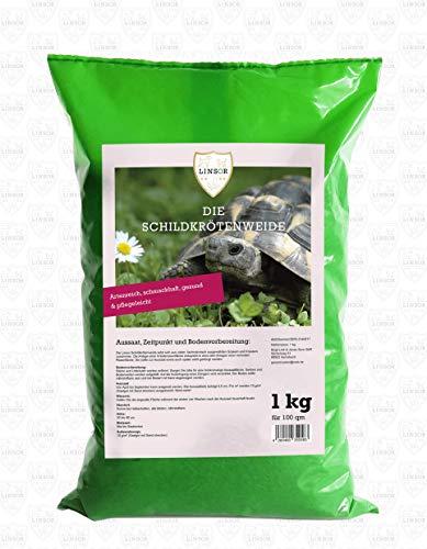 Linsor, salice per tartarughe, 1 kg, accessori per erbe, tartarughe, terrario, erbe selvatiche, sementi, erbe, tartarughe