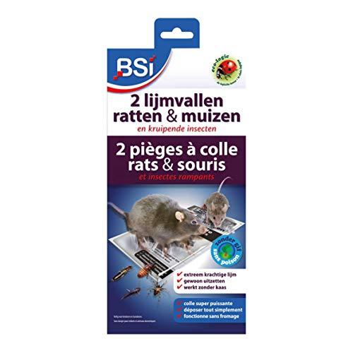 BSI 2 Pièges â colle pour Rat/Souris
