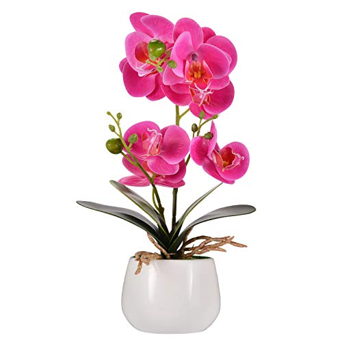 Asvert Phalaenopsis Bonsai de orquídeas de Flores Artificiales con jarrón de cerámica