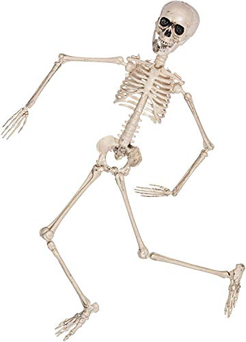 KBNIAN Halloween Skelett Set 40cm Horror Komplett Skelett + 60g Stretch Spinnennetz + 30 Pcs Gruselige Plastik Spinnen, für die Halloween-Partydekoration