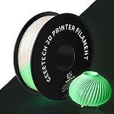 PLA Filament 1.75mm Grauweiß, Glows Grün in the Dark, GEEETECH 3D Drucker Filament 1kg Spool