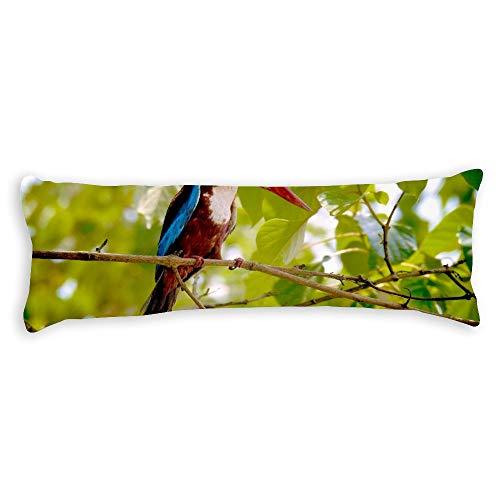 pealrich Fundas de almohada para pelo y piel de 40,6 x 60,9 cm, diseño de pájaro rojo púrpura decorativo lumbar, fundas de cojín para sofá, dormitorio, coche