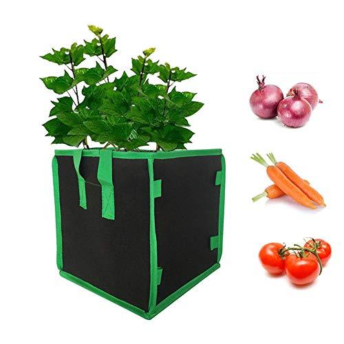Grow Bag Gemüse Strawberry