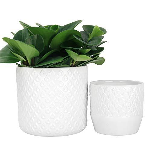 LA JOLIE MUSE Juego de 2 macetas de cerámica para plantas, patrón de plumas de pavo real en relieve de 16 cm, maceta de interior con orificio de drenaje, color blanco