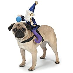 Wizard Riding Dog Costume