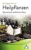 Heilpflanzen - Gesund durch die Kraft der Natur