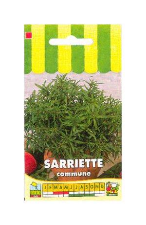 Les Graines Bocquet - Graines De Sarriette Commune - Graines Potagères À Semer - Sachet De 1Grammes