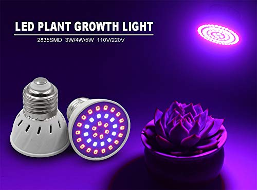 WINBST Pflanzenlampe Grow Light LED Wachstumslampe Full Spectrum für Zimmerpflanzen und Blumen Wachstum Tageslicht Pflanzenleuchte