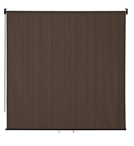 VICLLAX Outdoor Roller Shade, Patio Blinds Roll Up Shade (6' W X 6' L), Mocha