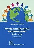 Diritto internazionale dei diritti umani. Teoria e prassi...