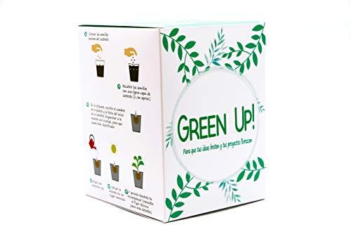 Green Up! Kit de Plantas–Kit completo de Hierbas Interior para Huerto Urbano–Cultiva tus propias Plantas y Hierbas Aromáticas–Kit de Cultivo Semillas 100% naturales (Orégano, Perejil, Cebollin