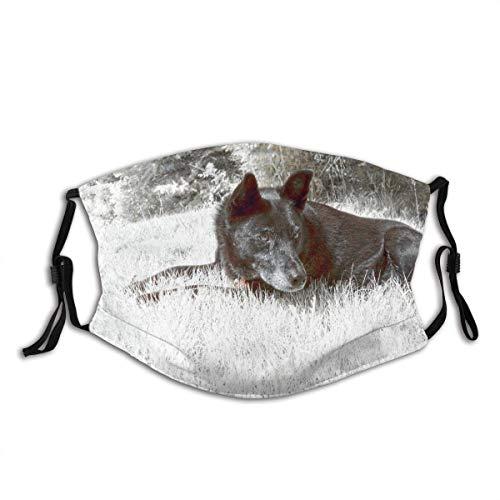 Gesichtsschutz Mundschutz Hund Infrarot Farbe Surreal Abstract Outdoor Haustier Sturmhaube Mund Bandanas Hals Gamasche mit 2 Filtern