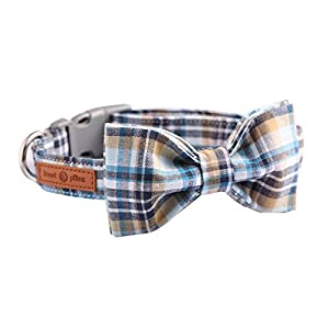 Lionet Paws Dog and Cat Collar with Bowtie Grid CollarPlastic Buckle LightAdjustable Collars for SmallMediumLarge Dogs