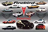 Pontiac Firebird 1967-2000 History Car Poster.