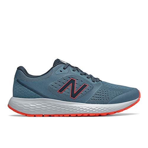New Balance Men's 520 V6 Running Shoe