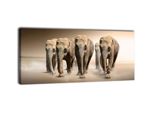 wandmotiv24 Leinwandbild Panorama Nr. 189 Elefantengruppe 100x40cm, Keilrahmenbild, Bild auf Leinwand, Elefanten Afrika Steppe