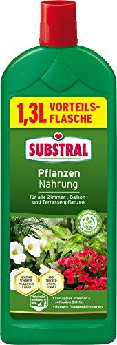 Substral Pflanzennahrung Nahrung, Qualitäts-Flüssigdünger für alle Grünpflanzen im Zimmer auf Balkon, Terrasse und Beet, 1,3 Liter Vorteilsflasche