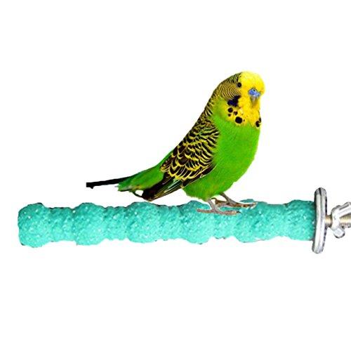 Keersi Sitzstange aus Holz, zur Pflege von Krallen und Schnäbeln, Spielzeug für Vögel, Papageien,...