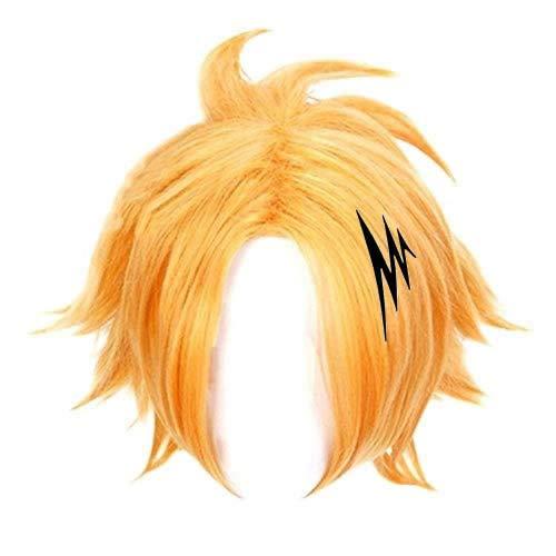 HLZG Kaminari Denki Wig + Hairpin,Anime My Hero Academia Cosplay Costume Wig for Men (wig+cilp)
