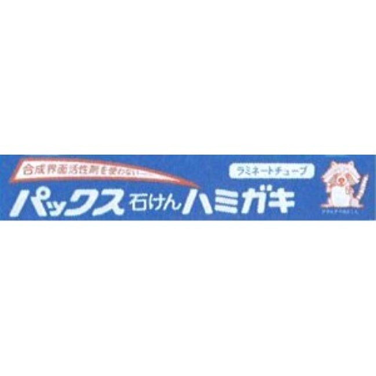 ガレージインレイ編集者パックス石けんハミガキ 140g