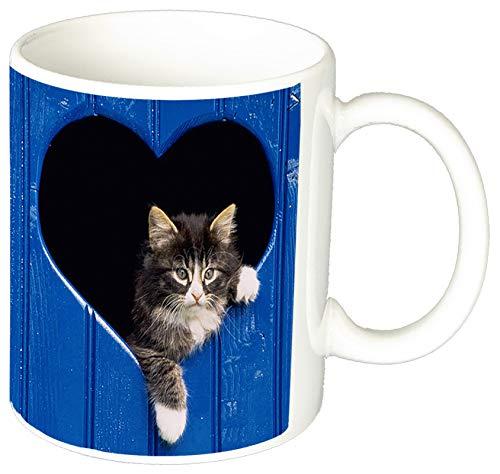 MasTazas Gatitos Gatos Kittens Cats R Tasse Mug