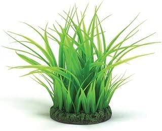 biOrb Grass Ring