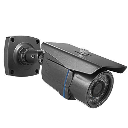 Love lamp HD bewakingscamera voor buiten met nachtzicht voor het nachtzicht van de camera AHD 1080P Domestic bewaking