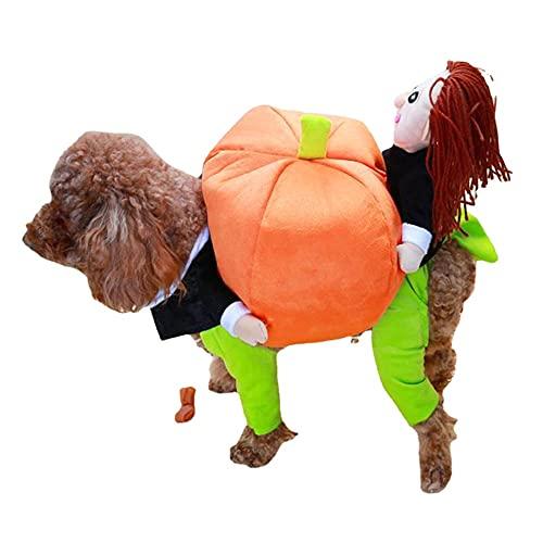 Vagbalena Disfraces de Halloween para Perros Pumpkin Teddy Poodle Ropa de Navidad transforma Ropa para Mascotas Perro Lleva meln Divertido Mascota Perro Gato Ropa, Ropa para Mascotas (M,A)