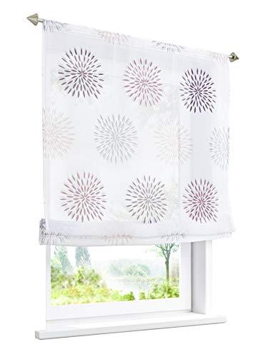 BAILEY JO Estor con motivos de círculos, impresión transparente, cortina (ancho 140 x 140 cm, con cordón), color morado