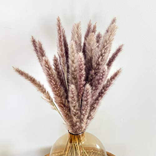 """Pampas Grass - Natural Dried Plants Faux Pampas for Flower Arrangements Wedding Decor Kitchen Decor Boho Home Decor - 30 Stems 18"""" Length (Natural)"""