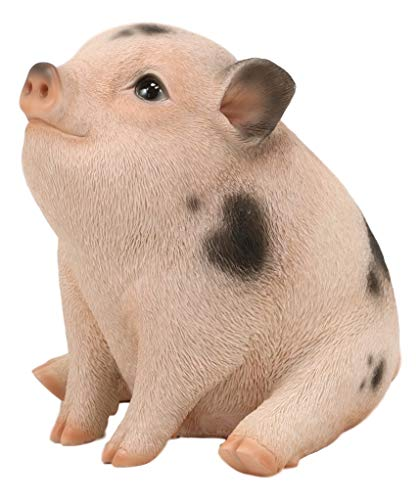 Ebros Adorable Realistic Animal Farm Napoleon Fat Piglet Pig Statue 6  Long Rustic Country Piggy Pet Porcine Pigs with Glass Eyes Collectible Figurine