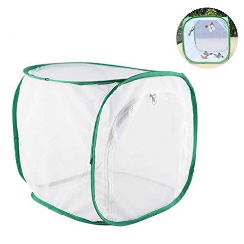 NROCF Pliable Ventilé Papillon Habitat Cage - Cages d'élevage durables Portable Boîtier en Plastique élevage d'incubation Box,30x30x30cm