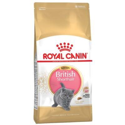 Royal Canin Katzenfutter, 400 g, britische Kurzhaar-Katzenfutter, verkauft von Maltby's