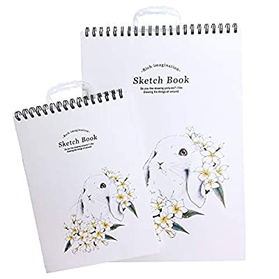"Lasten Sketch Pads, Sketchbooks, 96 Sheets Sketching Paper, 2 Pack-16.5""x 11.4"" and 11.4""x 8.3"", Acid Free, Perfect Art Book for Sketching, Drawing, Doodling, Notebooks & More"