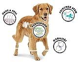 8in1 Fillets Pro Skin & Coat Hundesnacks - 3