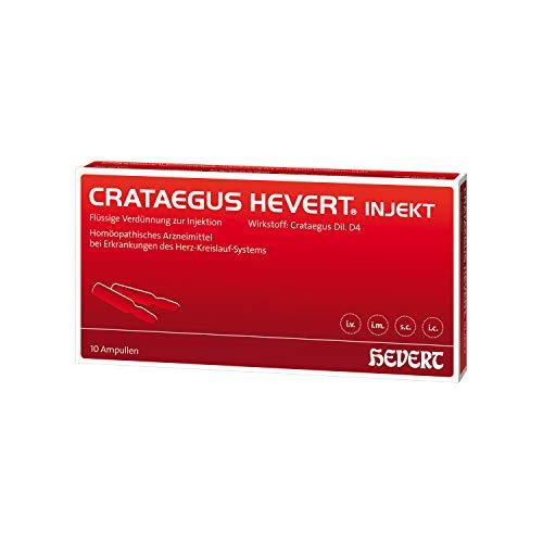 Crataegus Hevert injekt Ampullen, 10 St. Ampullen