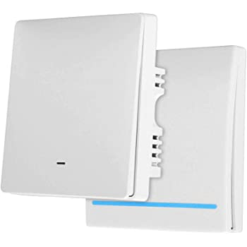 jinvoosm tipo WiFi Smart Wall Switch 1/Gang EU Switch Panel Compatiable with Alexa Echo or Works with Google Home
